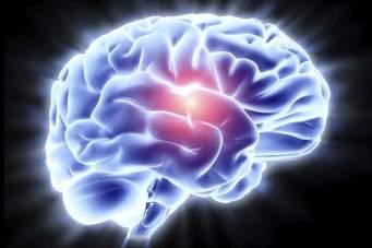 Avoiding 'Old Age' Disease By Nourishing The Brain