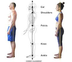 Posture and its effects on your shoulders.